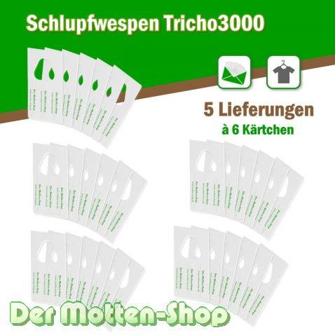Schlupfwespen gegen Kleidermotten 6 Karten x 5 Lieferungen
