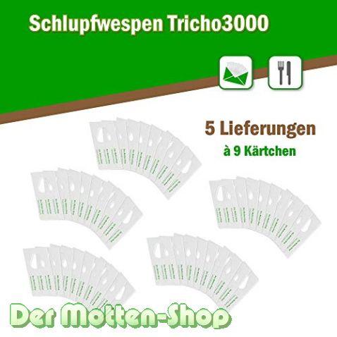 Schlupfwespen gegen Kleidermotten 9 Karten x 5 Lieferungen